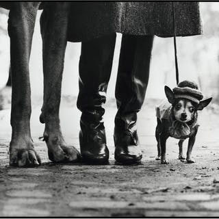 Elliot Erwitt (1928-) - 'Felix, Gladys and Rover', 1974
