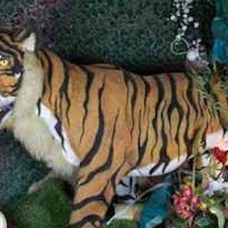 Automate électrique - Le Tigre - XXème siècle