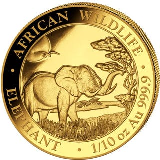 Somalia - 100 Shillings 2019 Elephant - 1/10 oz - Gold