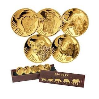 Cameroon - 100 Francs 2013/2018 Big Five Series (5 coins) - Gold
