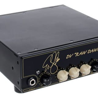 DV Mark - Eric Gales Raw Dawg EG 250W Guitar - Head - Verstärker