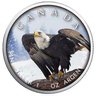 Kanada - 5 Dollar 2019 On the Trails of Wildlife - Bald Eagle - 1 Oz - Silber