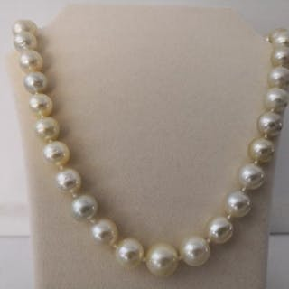 South sea pearls, 11-13 mm Round Shape Natural Colors- Necklace