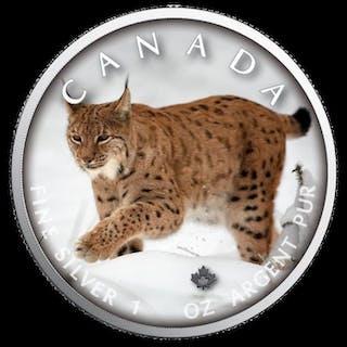 Kanada - 5 Dollar 2019 On the Trails of Wildlife - Luchs- 1 Oz - Silber