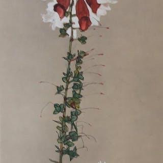 """Egon Schiele (1890 - 1918) - """"Roter Fingerhut"""" - 1910"""