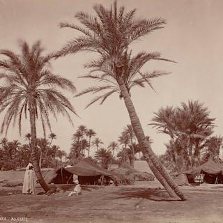 Non identifié (XIX) - Oasis à Biskra, Algérie