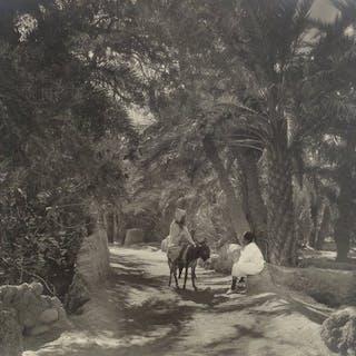 Alexandre Bougault fils (1875-1950) - Scène sous les palmiers, Biskra