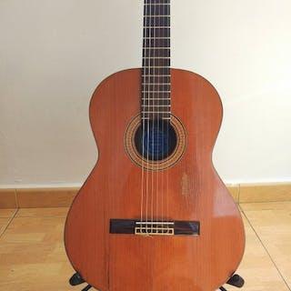 Ramirez - Klassische Gitarre - Spanien - 1970