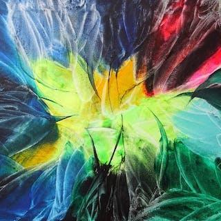 Sophie Lenoir - Composition