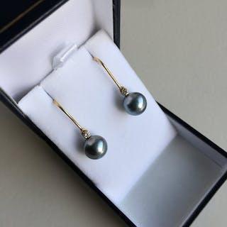 18 kt. Tahiti pearls - Earrings - Diamond