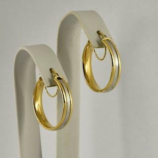 18 kt. White gold, Yellow gold - Earrings