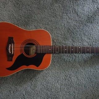 EKO - Collector:Eko Guitare Ranger VI datant du milieu...