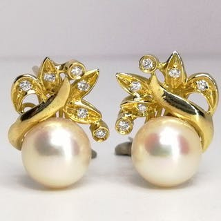 18 kt. Gold - Earrings Mixed - Diamonds