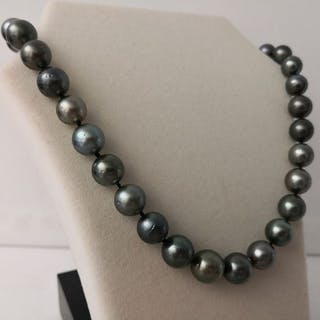 Tahitian pearls - Necklace