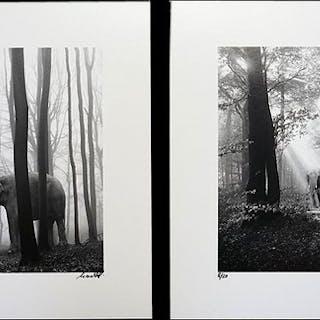 Frank Machalowski (1971-) - tierwald#96 & tierwald#134