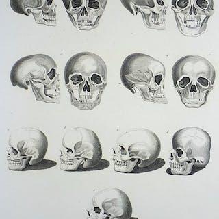 Thomas Holloway (1748-1827); Large Folio engraving 34 x...