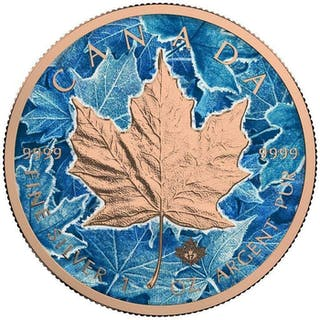 "Kanada - 5 Dollar 2017 - Ahornblatt ""Winter"" - Koloriert - 1 Unze - Silber"