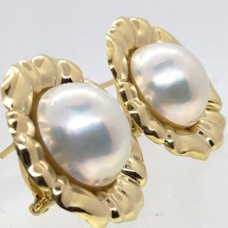 18 kt. Gold - Earrings high quality mabe pearls