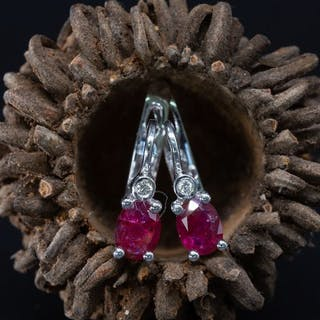 14 kt. White gold - Earrings - 0.69 ct Ruby - 0.03 ct...