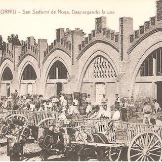 Spanien - Postkarten (Set von 185) - 1910