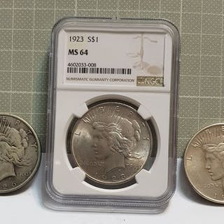 USA - Dollar (Peace) 1923 in NGC Slab + Dollars 1922 and 1926 (3 coins)- Silber