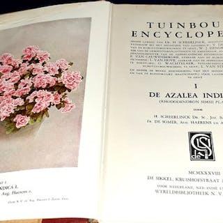 Tuinbouw Encyclopedie. I De Azalea Indica L. (Rhododendron Simsii Planch) - 1938