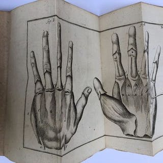 Lorenz Heister - Compendium anatomicum - 1741