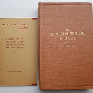R.A. Quintus - The cultivation of sugar cane - 1923