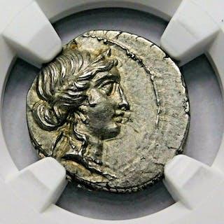 Roman Republic - AR
