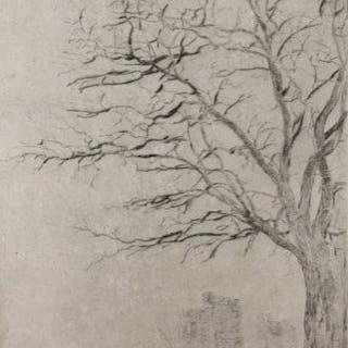 James Ensor (1860 - 1949) - L'acacia