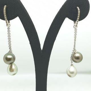 Damiani - 18 carati Oro bianco - Orecchini Perle varie - Diamanti