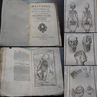 George-Louis Leclerc de Buffon - Histoire Naturelle 'Du...