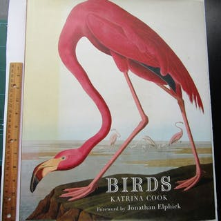 Katrina Cook- Birds - 2007