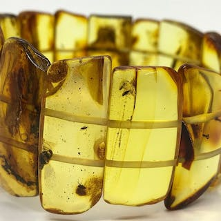 Baltic Amber - Bracelet With Insects In Every Bead - Natural (untreated)