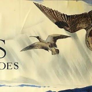 E.L. Monogram - Lotus Winter Time Shoes - Original...