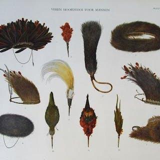 C.C.F.M. le Roux - Bergpapoea's van Nieuw-Guinea, Vol. 3 - 1950
