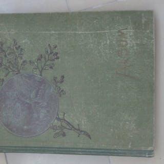 Burschenschaft - Verbindungen + Akt + Personen- Album mit Postkarten (71) - 1900