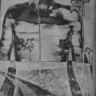 Erwin Bruegger - (2x) 'Als Palme' / 'Der grosse Stein', 2008