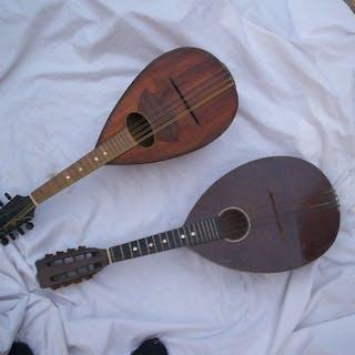 No brand - Modelli vari - Mandolino - 1900