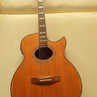 li MAVERY FL 500 - Electr. akoestisch - Gitarren - China - 2010