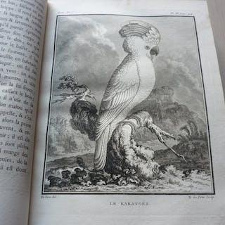 Buffon - Histoire naturelle des oiseaux - 1779