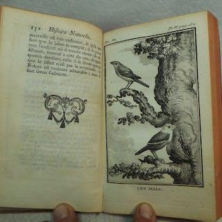Georges Louis Leclerc comte de Buffon - Histoire naturelle des oiseaux