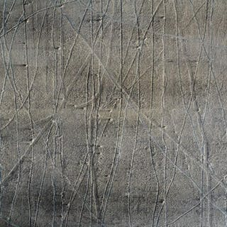Melanie Comber, British b.1970- Photo, 2000; oil and pigment on canvas