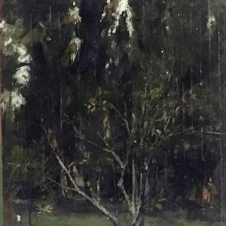 Martella Cone Lane [1875-1962] : The lone tree, ca.1900.
