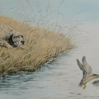 1937 Pencil signed #ed Sporting hd watercoloured etching aquatint