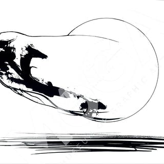 Falken av Dan Jonsson.