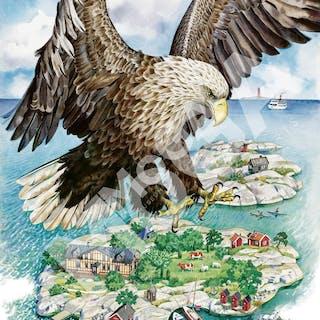 Havsörn. En affisch åt skärgårdsstiftelsen, 90-tal. Jane Bark.