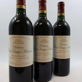 12 bouteilles CHÂTEAU HAUT BAGES LIBERAL 1995 5è GC Pauillac (base goulot