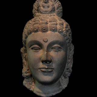 BUDDHA HEAD (Dutta-10260)