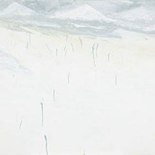 Summer 10 - Peng Liu